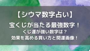 シウマの宝くじ(年末ジャンボ)が当たる最強数字!フルーツの画像で開運!